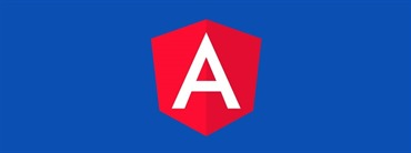 How to create Custom Validators for Angular Reactive Forms