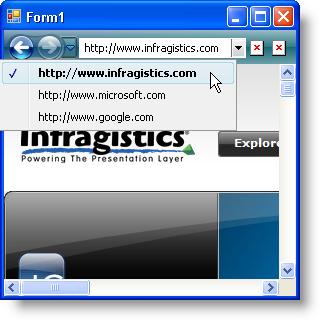Creating an Internet Browsing History - Infragistics Windows