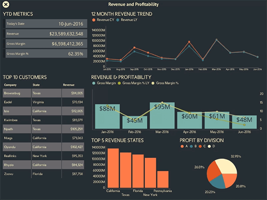 Executive Revenue and Profitability Dashboard created with ReportPlus