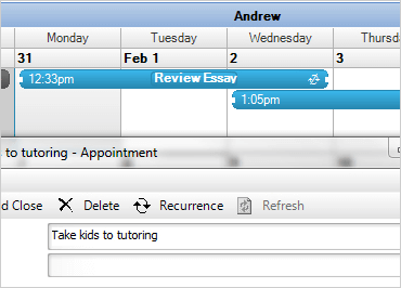 WinForms Schedule Calendar Functionality