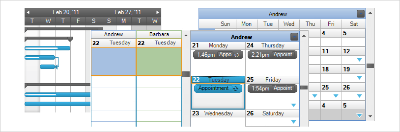 WinForms Scheduling Views