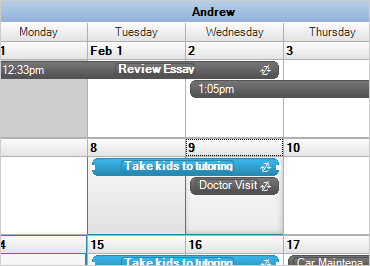 WinForms Schedule Data Binding