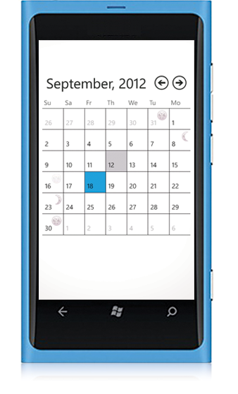Windows Phone Calendar