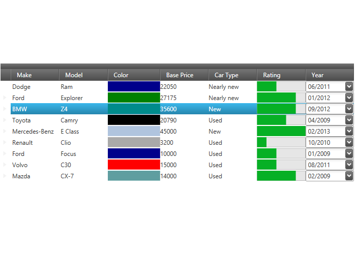 Template fields data grid wpf for Wpf datagrid control template