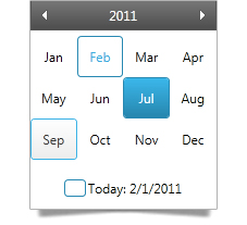 Use the WPF month calendar control to view dates by month.