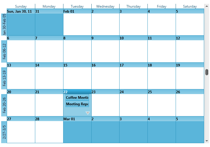 Month View Single Calendar - Schedule - WPF