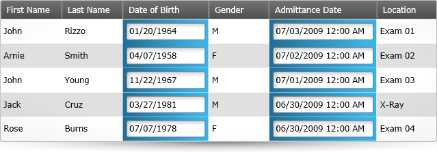Date and Time Data Validations with the Silverlight data grid.
