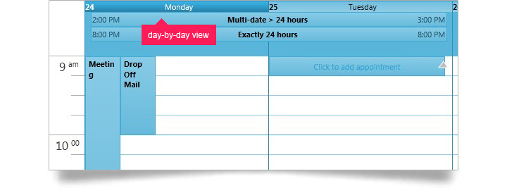 Users can view multiple resources calendars for a day-by-day view of activities.