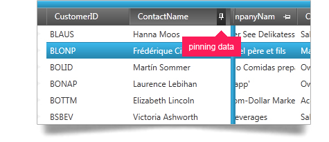 Scroll, pin and move data around using the WPF grid fixed headers, pinned rows and moveable columns feature.